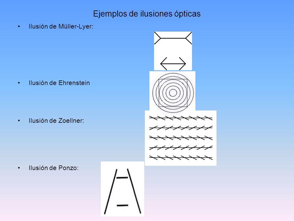 Ejemplos de ilusiones ópticas Ilusión de Müller-Lyer: Ilusión de Ehrenstein Ilusión de Zoellner: Ilusión de Ponzo: