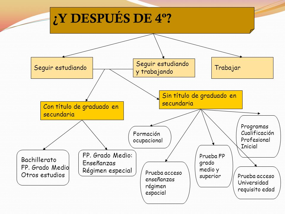 Seguir estudiando Seguir estudiando y trabajando Trabajar Con título de graduado en secundaria Sin título de graduado en secundaria Bachillerato FP.
