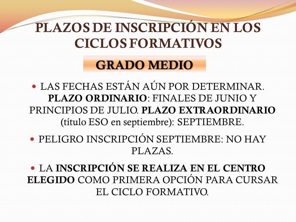 PLAZOS DE INSCRIPCIÓN EN LOS CICLOS FORMATIVOS LAS FECHAS ESTÁN AÚN POR DETERMINAR. PLAZO ORDINARIO : FINALES DE JUNIO Y PRINCIPIOS DE JULIO. PLAZO EX