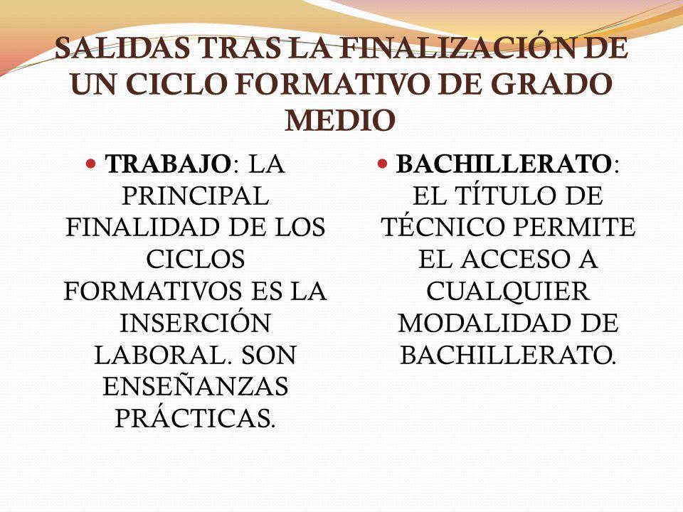 SALIDAS TRAS LA FINALIZACIÓN DE UN CICLO FORMATIVO DE GRADO MEDIO TRABAJO : LA PRINCIPAL FINALIDAD DE LOS CICLOS FORMATIVOS ES LA INSERCIÓN LABORAL. S