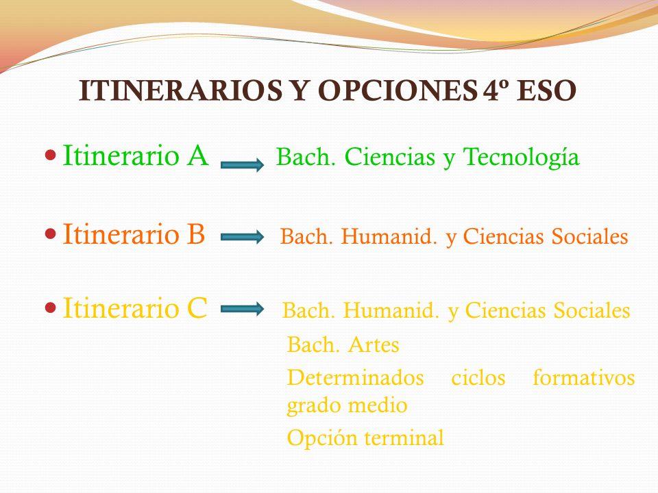 Itinerario A Bach. Ciencias y Tecnología Itinerario B Bach. Humanid. y Ciencias Sociales Itinerario C Bach. Humanid. y Ciencias Sociales Bach. Artes D