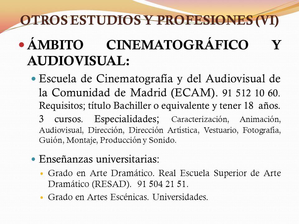 OTROS ESTUDIOS Y PROFESIONES (VI) ÁMBITO CINEMATOGRÁFICO Y AUDIOVISUAL: Escuela de Cinematografía y del Audiovisual de la Comunidad de Madrid (ECAM).