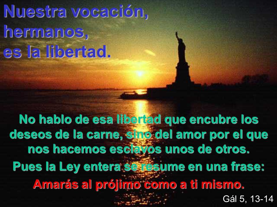Nuestra vocación, hermanos, es la libertad. No hablo de esa libertad que encubre los deseos de la carne, sino del amor por el que nos hacemos esclavos