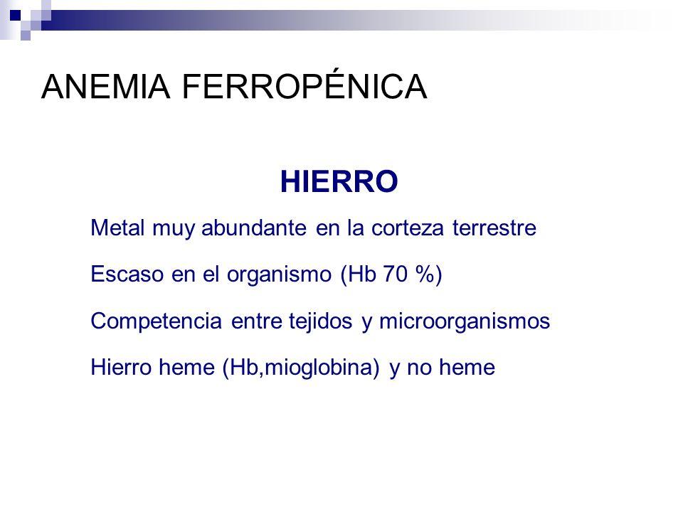 ANEMIA FERROPÉNICA HIERRO Metal muy abundante en la corteza terrestre Escaso en el organismo (Hb 70 %) Competencia entre tejidos y microorganismos Hie