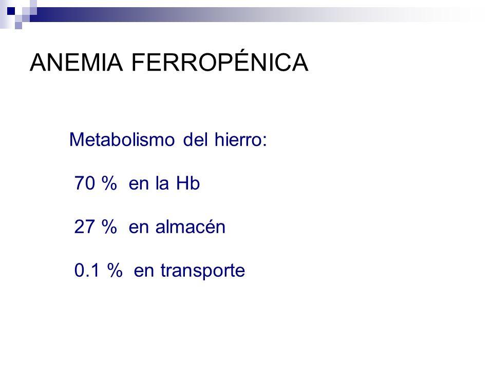 ANEMIA FERROPÉNICA Metabolismo del hierro: 70 % en la Hb 27 % en almacén 0.1 % en transporte