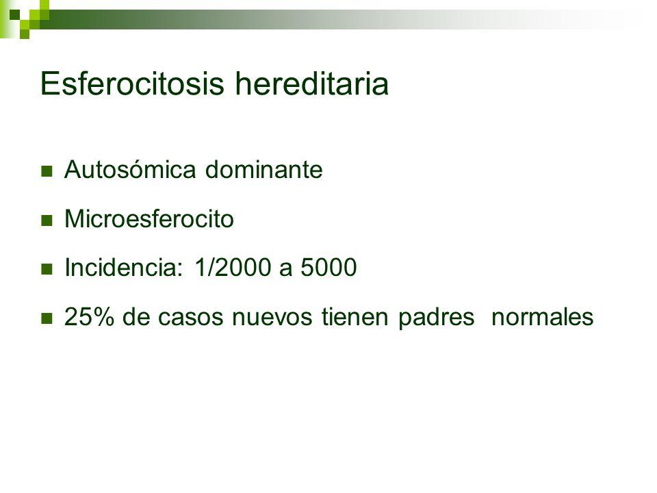 Esferocitosis hereditaria Autosómica dominante Microesferocito Incidencia: 1/2000 a 5000 25% de casos nuevos tienen padres normales
