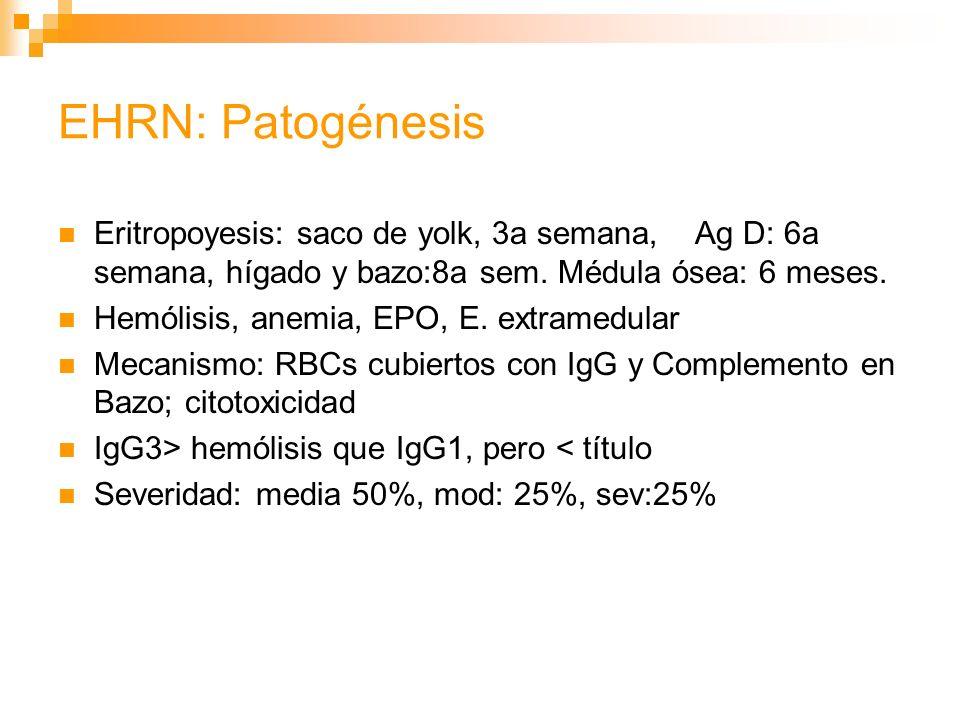 EHRN: Patogénesis Eritropoyesis: saco de yolk, 3a semana, Ag D: 6a semana, hígado y bazo:8a sem.