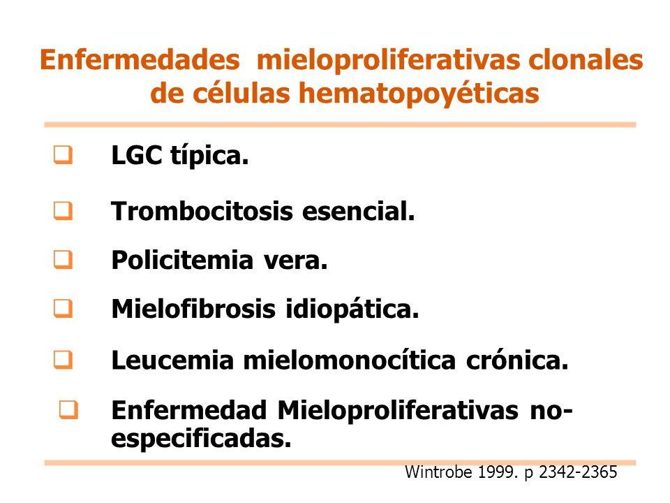 LGC típica. Trombocitosis esencial. Policitemia vera. Mielofibrosis idiopática. Leucemia mielomonocítica crónica. Enfermedad Mieloproliferativas no- e