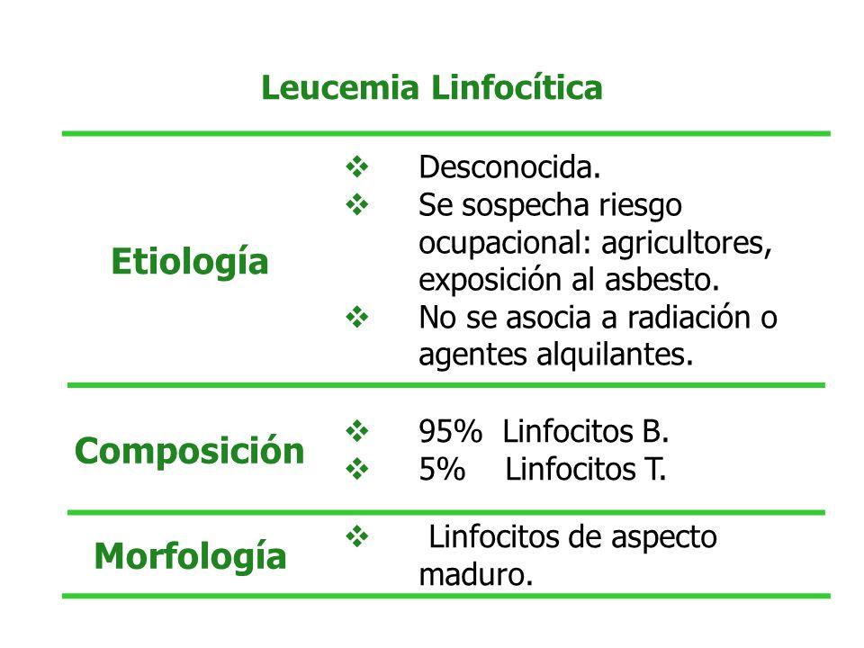 Asintomático Con Linfocitosis.Wintrobe:1999. p 2405-2421.