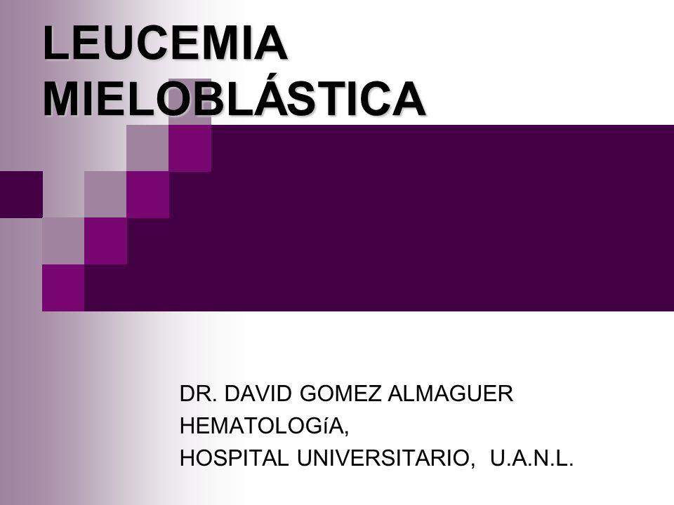 Leucemia aguda mieloblástica Predominan en adultos 10-15% en niños Se caracterizan por blastos que con frecuencia presentan gránulos o cuerpos de Auer.