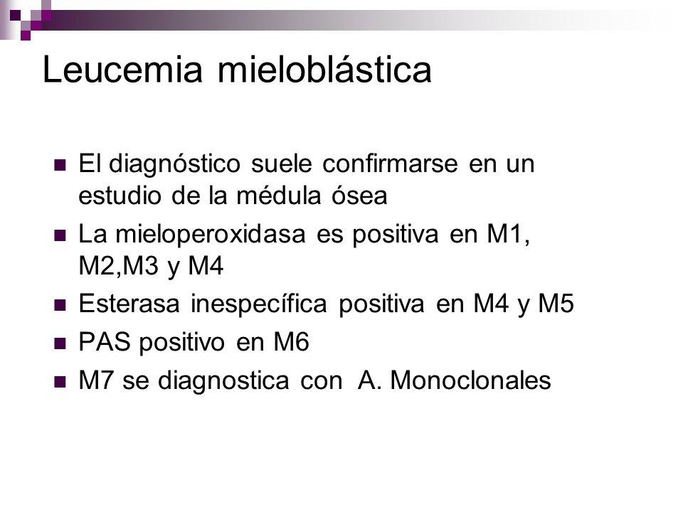 Leucemia mieloblástica El diagnóstico suele confirmarse en un estudio de la médula ósea La mieloperoxidasa es positiva en M1, M2,M3 y M4 Esterasa inespecífica positiva en M4 y M5 PAS positivo en M6 M7 se diagnostica con A.