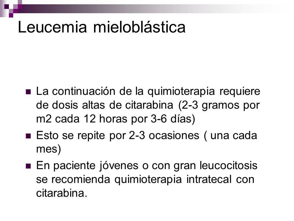 Leucemia mieloblástica La continuación de la quimioterapia requiere de dosis altas de citarabina (2-3 gramos por m2 cada 12 horas por 3-6 días) Esto se repite por 2-3 ocasiones ( una cada mes) En paciente jóvenes o con gran leucocitosis se recomienda quimioterapia intratecal con citarabina.