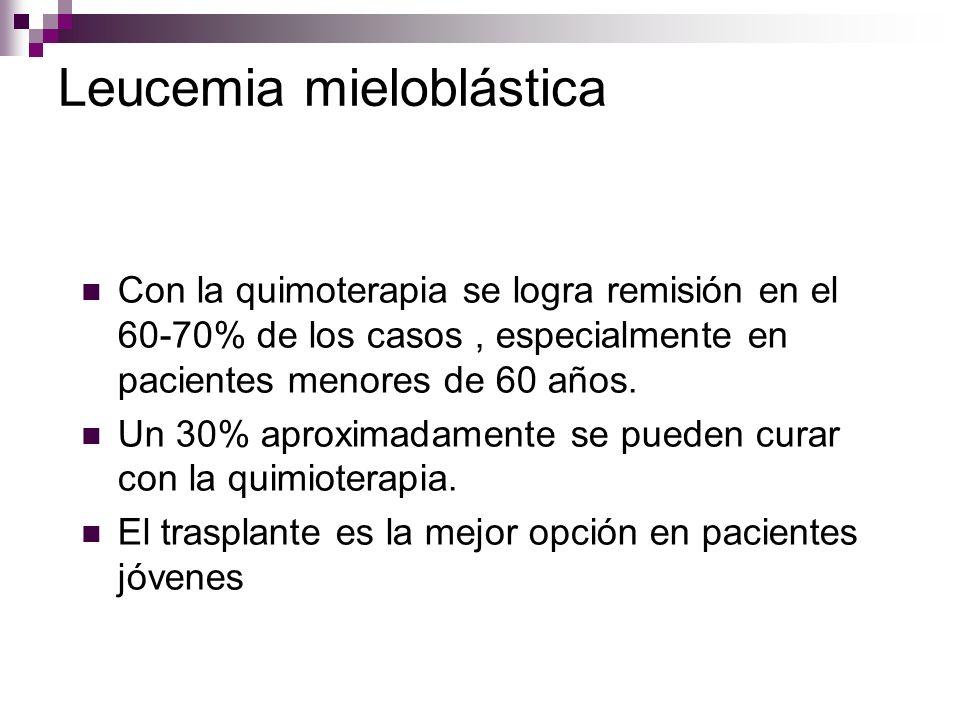 Leucemia mieloblástica Con la quimoterapia se logra remisión en el 60-70% de los casos, especialmente en pacientes menores de 60 años.