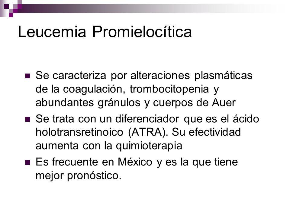 Leucemia Promielocítica Se caracteriza por alteraciones plasmáticas de la coagulación, trombocitopenia y abundantes gránulos y cuerpos de Auer Se trata con un diferenciador que es el ácido holotransretinoico (ATRA).