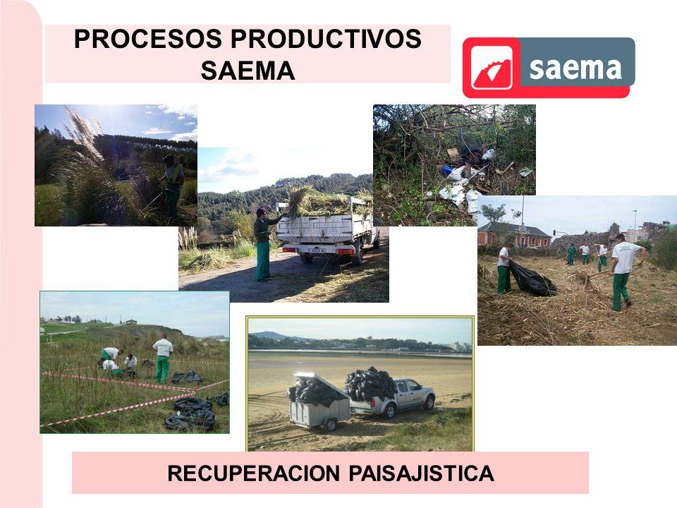 RECUPERACION PAISAJISTICA PROCESOS PRODUCTIVOS SAEMA