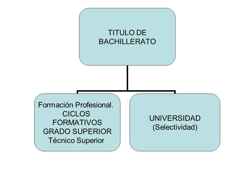 TITULO DE BACHILLERATO Formación Profesional. CICLOS FORMATIVOS GRADO SUPERIOR Técnico Superior UNIVERSIDAD (Selectividad)
