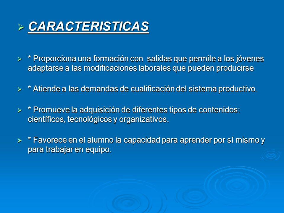 CARACTERISTICAS CARACTERISTICAS * Proporciona una formación con salidas que permite a los jóvenes adaptarse a las modificaciones laborales que pueden