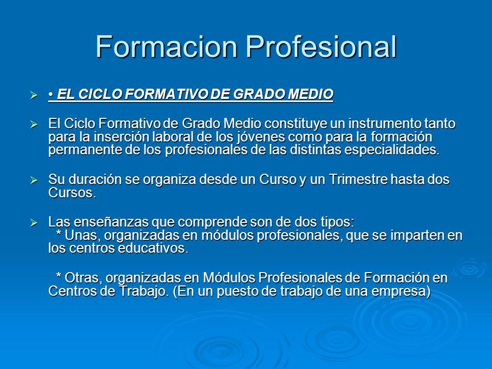 Formacion Profesional EL CICLO FORMATIVO DE GRADO MEDIO EL CICLO FORMATIVO DE GRADO MEDIO El Ciclo Formativo de Grado Medio constituye un instrumento