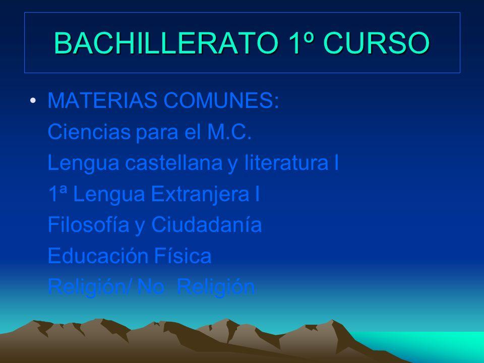 BACHILLERATO 1º CURSO MATERIAS COMUNES: Ciencias para el M.C. Lengua castellana y literatura I 1ª Lengua Extranjera I Filosofía y Ciudadanía Educación