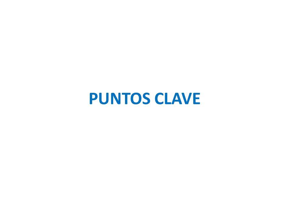 PUNTOS CLAVE