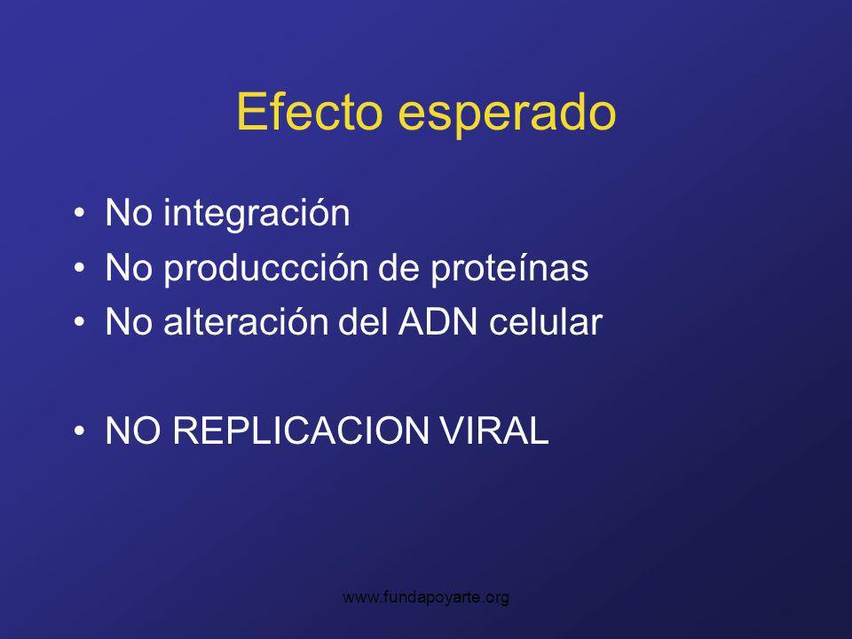 www.fundapoyarte.org Efecto esperado No integración No produccción de proteínas No alteración del ADN celular NO REPLICACION VIRAL