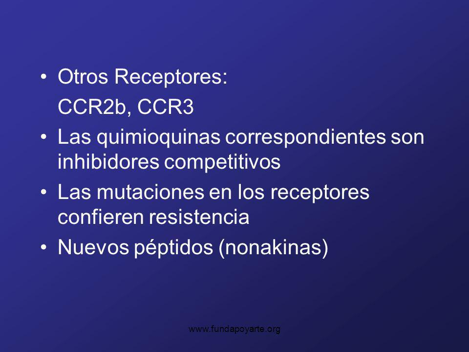 Otros Receptores: CCR2b, CCR3 Las quimioquinas correspondientes son inhibidores competitivos Las mutaciones en los receptores confieren resistencia Nuevos péptidos (nonakinas)