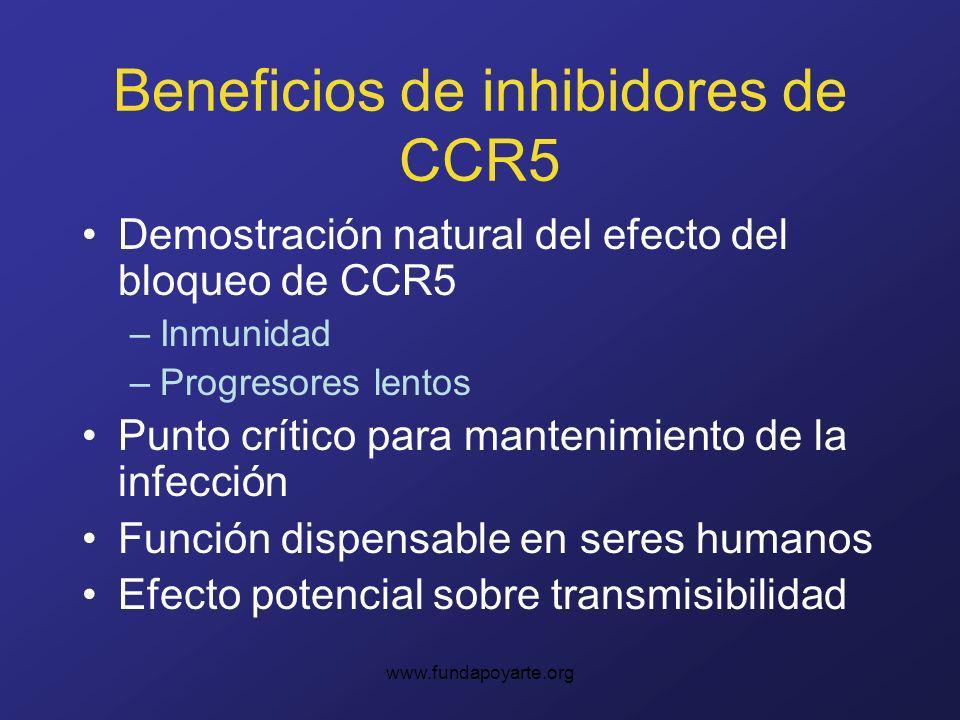 www.fundapoyarte.org Beneficios de inhibidores de CCR5 Demostración natural del efecto del bloqueo de CCR5 –Inmunidad –Progresores lentos Punto crítico para mantenimiento de la infección Función dispensable en seres humanos Efecto potencial sobre transmisibilidad