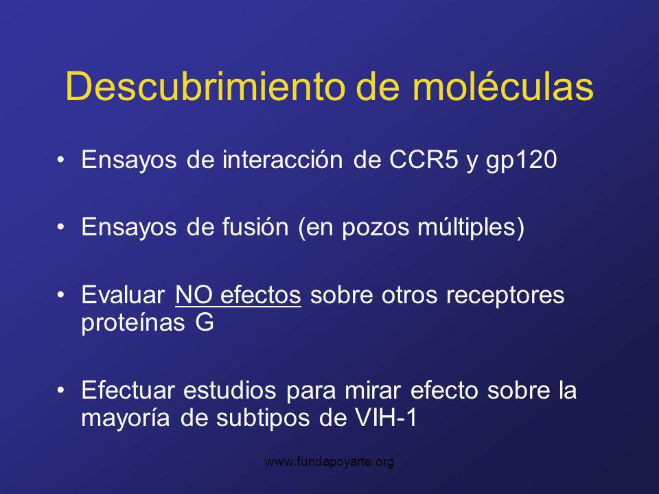 www.fundapoyarte.org Descubrimiento de moléculas Ensayos de interacción de CCR5 y gp120 Ensayos de fusión (en pozos múltiples) Evaluar NO efectos sobre otros receptores proteínas G Efectuar estudios para mirar efecto sobre la mayoría de subtipos de VIH-1
