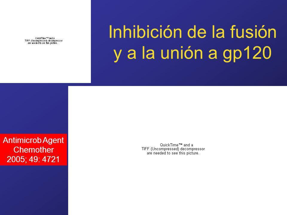 www.fundapoyarte.org Inhibición de la fusión y a la unión a gp120 Antimicrob Agent Chemother 2005; 49: 4721