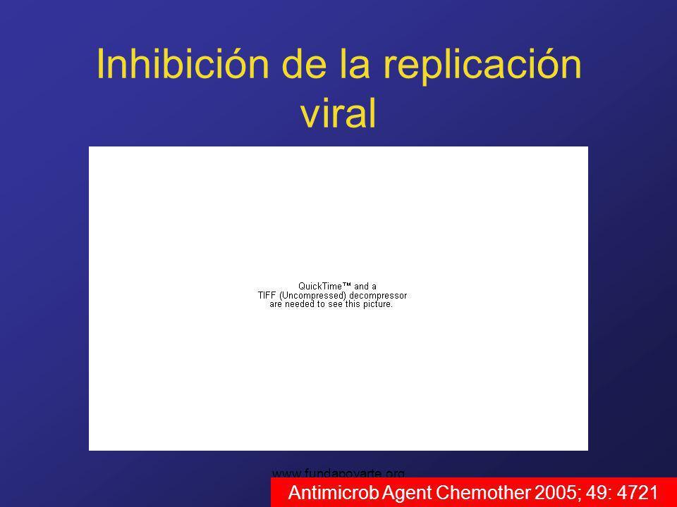 www.fundapoyarte.org Inhibición de la replicación viral Antimicrob Agent Chemother 2005; 49: 4721