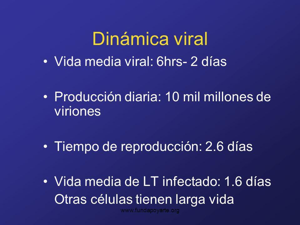 www.fundapoyarte.org Dinámica viral Vida media viral: 6hrs- 2 días Producción diaria: 10 mil millones de viriones Tiempo de reproducción: 2.6 días Vida media de LT infectado: 1.6 días Otras células tienen larga vida