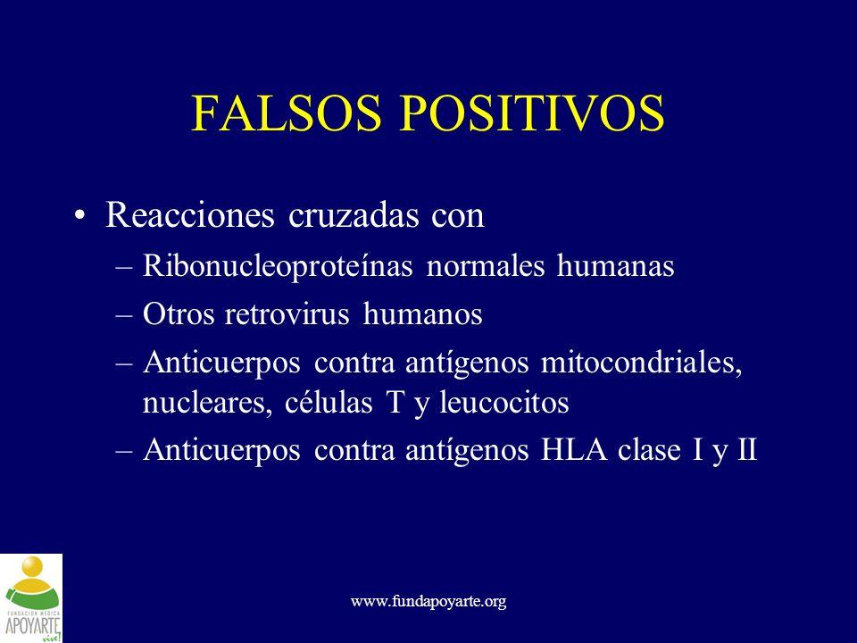 www.fundapoyarte.org FALSOS POSITIVOS Reacciones cruzadas con –Ribonucleoproteínas normales humanas –Otros retrovirus humanos –Anticuerpos contra antí