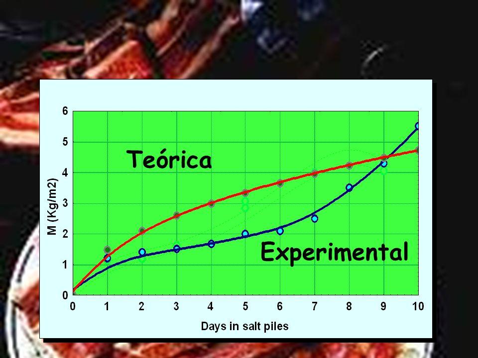 Consecuencia: Entrada máxima de sal al final del proceso Entrada máxima de sal al final del proceso