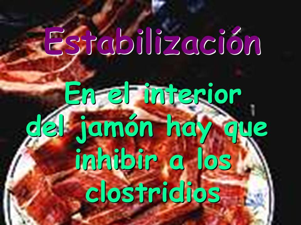 Estabilización Concentración salina suficiente para inhibir los gérmenes alterantes Concentración salina suficiente para inhibir los gérmenes alterant
