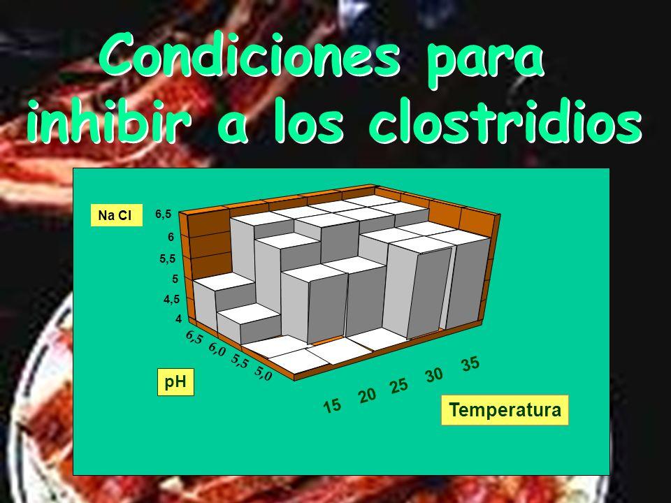 Estabilización En el interior del jamón hay que inhibir a los clostridios En el interior del jamón hay que inhibir a los clostridios