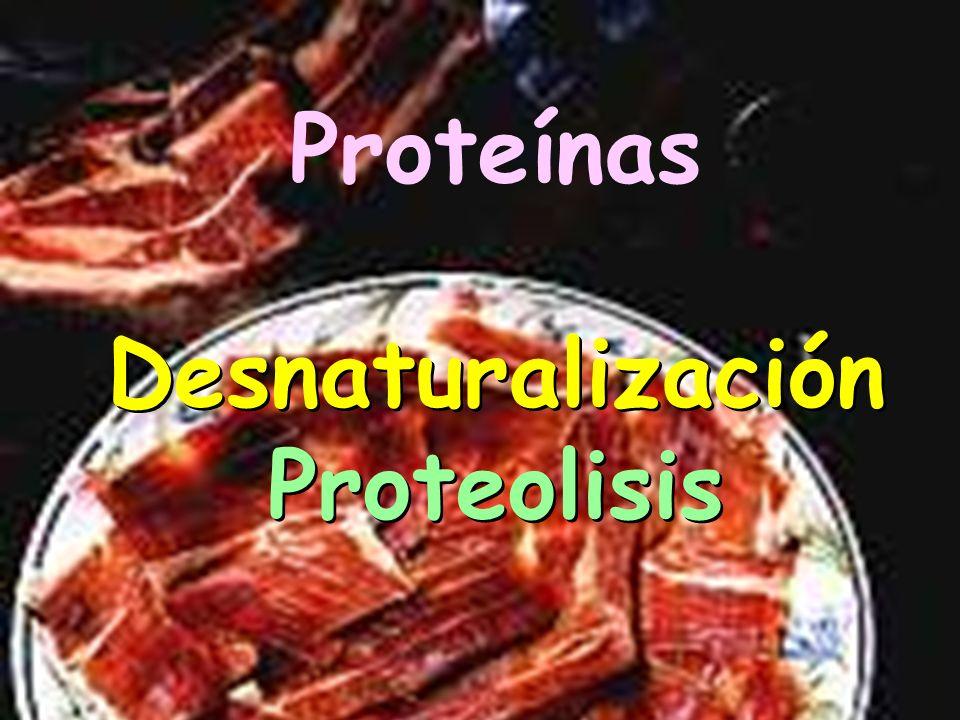 CAMBIOS Proteínas Grasas CAMBIOS Proteínas Grasas AROMATIZACION (MADURACION)