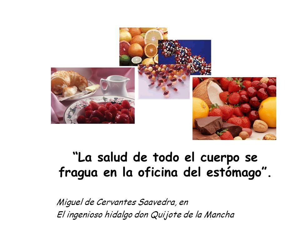 La salud de todo el cuerpo se fragua en la oficina del estómago. Miguel de Cervantes Saavedra, en El ingenioso hidalgo don Quijote de la Mancha
