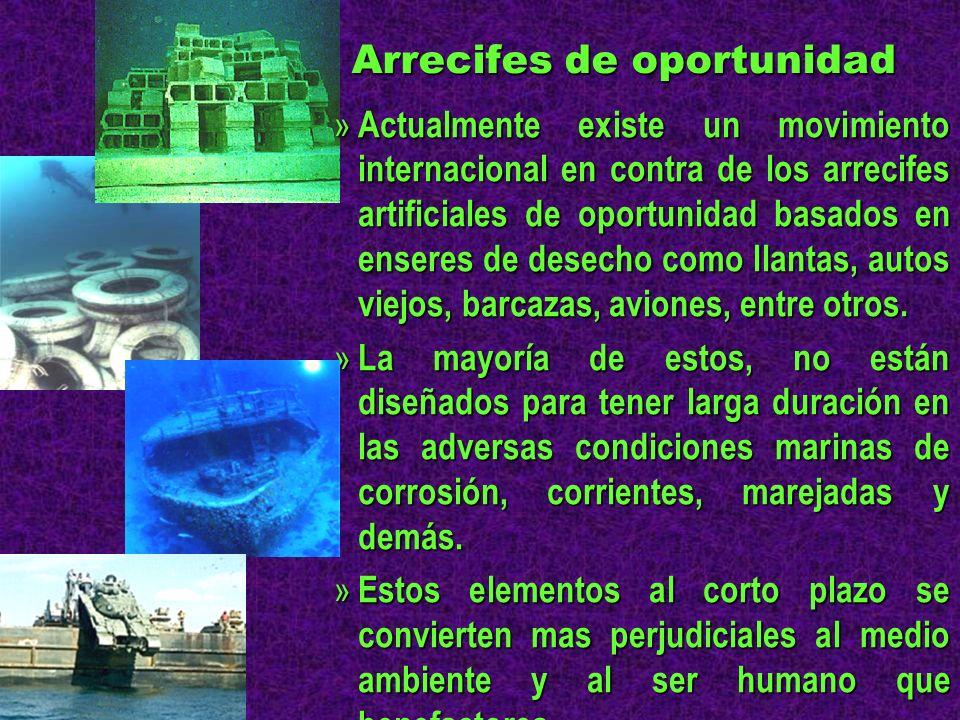 Arrecifes de oportunidad » Actualmente existe un movimiento internacional en contra de los arrecifes artificiales de oportunidad basados en enseres de