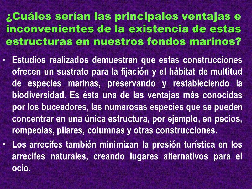 ¿Cuáles serían las principales ventajas e inconvenientes de la existencia de estas estructuras en nuestros fondos marinos? Estudios realizados demuest
