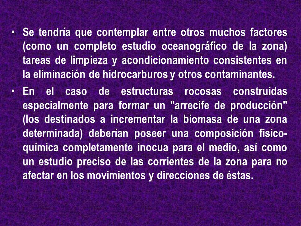 Se tendría que contemplar entre otros muchos factores (como un completo estudio oceanográfico de la zona) tareas de limpieza y acondicionamiento consi