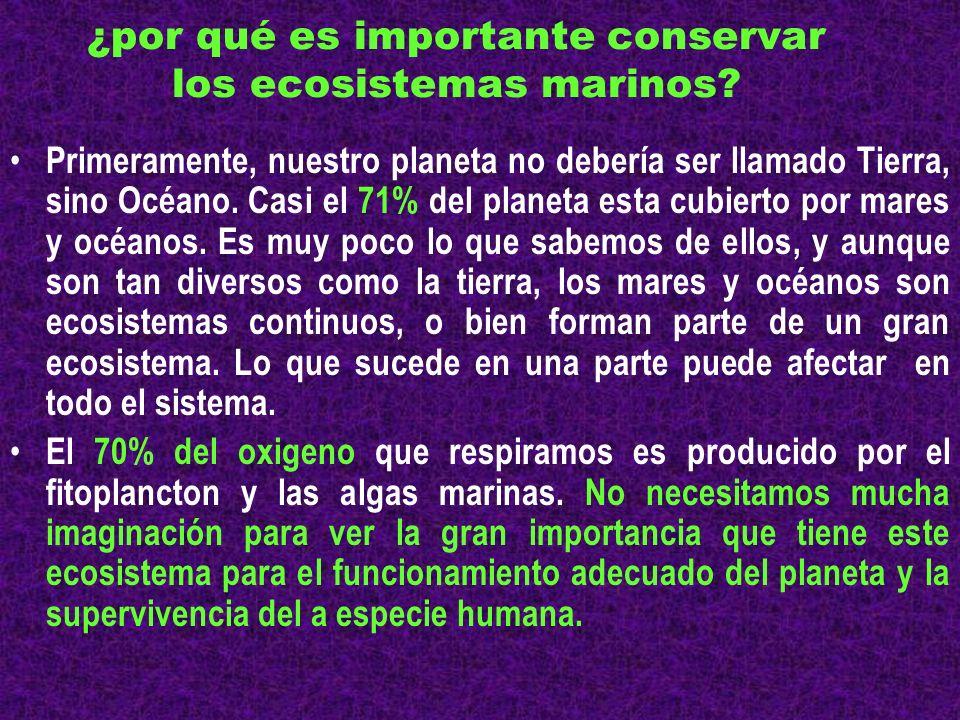 ¿por qué es importante conservar los ecosistemas marinos? Primeramente, nuestro planeta no debería ser llamado Tierra, sino Océano. Casi el 71% del pl