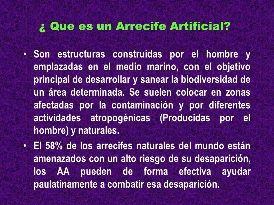 ¿ Que es un Arrecife Artificial? Son estructuras construidas por el hombre y emplazadas en el medio marino, con el objetivo principal de desarrollar y