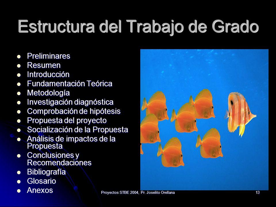 Proyectos STBE 2004, Pr. Joselito Orellana13 Estructura del Trabajo de Grado Preliminares Preliminares Resumen Resumen Introducción Introducción Funda