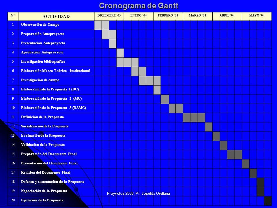 Proyectos 2008, Pr. Joselito Orellana19 Cronograma de Gantt Nº ACTIVIDAD DICIEMBRE ´03ENERO ´04FEBRERO ´04MARZO ´04ABRIL ´04MAYO ´04 1 Observación de