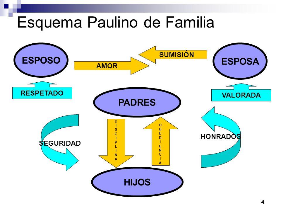 4 Esquema Paulino de Familia ESPOSO HIJOS PADRES ESPOSA OBEDIENCIAOBEDIENCIA DISCIPLINADISCIPLINA AMOR SUMISIÓN RESPETADO VALORADA HONRADOS SEGURIDAD