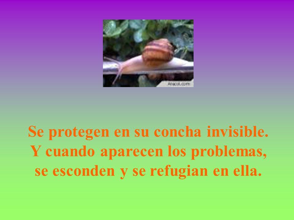 Se protegen en su concha invisible. Y cuando aparecen los problemas, se esconden y se refugian en ella.