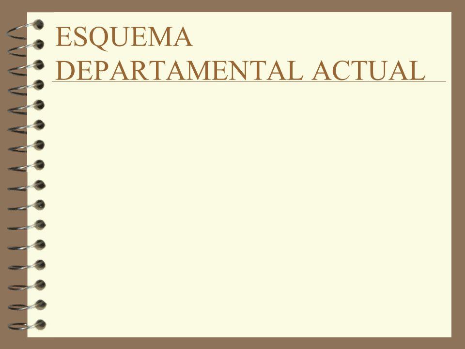 ESQUEMA DEPARTAMENTAL ACTUAL