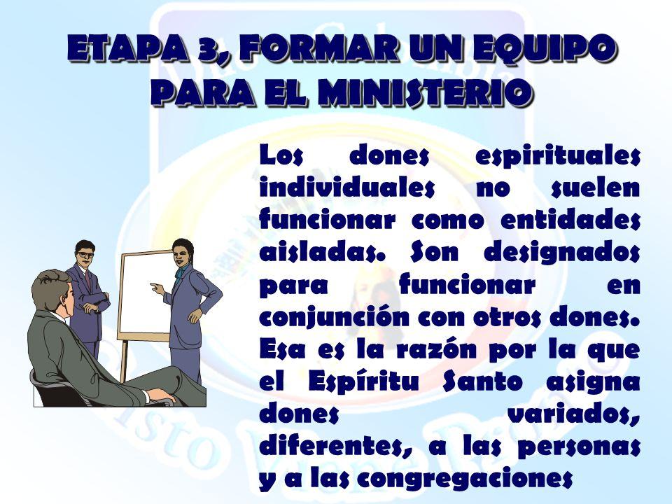 ETAPA 3, FORMAR UN EQUIPO PARA EL MINISTERIO Los dones espirituales individuales no suelen funcionar como entidades aisladas. Son designados para func