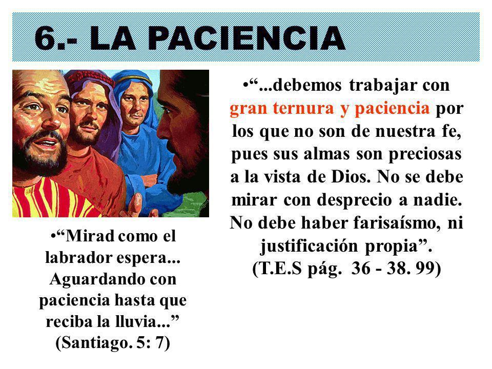 6.- LA PACIENCIA...debemos trabajar con gran ternura y paciencia por los que no son de nuestra fe, pues sus almas son preciosas a la vista de Dios. No