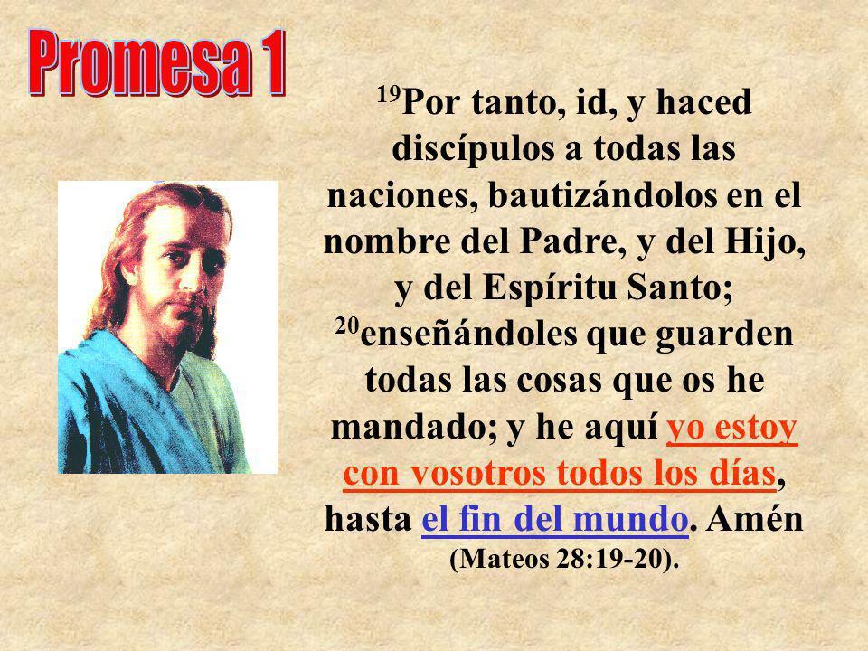 19 Por tanto, id, y haced discípulos a todas las naciones, bautizándolos en el nombre del Padre, y del Hijo, y del Espíritu Santo; 20 enseñándoles que